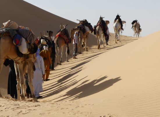 Karawane unterwegs in den Dünen