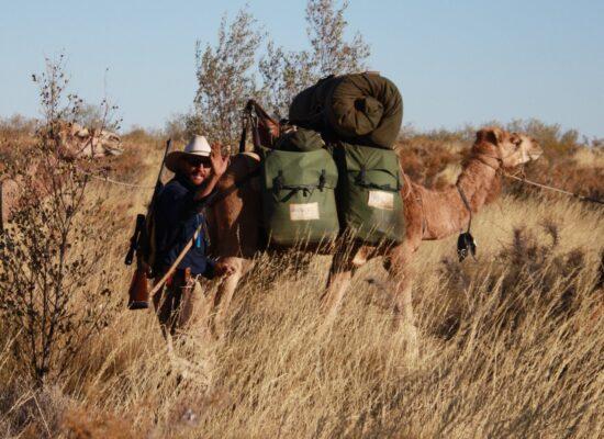 Eine Kamelexpedition entlang der Canning Stock Route der Kamelführer ist bewaffnet gegen wilde Kamelbullen die angreifen könnten