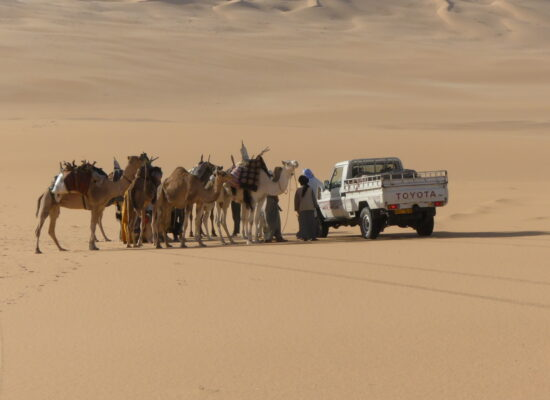 Two styles of transportation in the desert are meeting in Algeria 4x4 Overland Expedition with Outback Expeditions Algerien